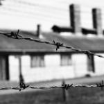 Jumătate de zi la Auschwitz…