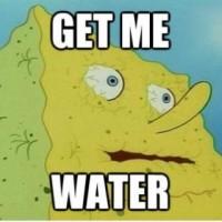 Cum se fac analizele apei la Apa Nova...
